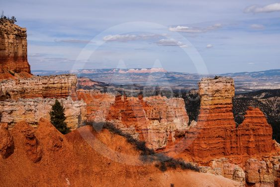 Ponderosa Point at Bryce Cabyon