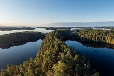 Taiga forest and lakes in the Saimaa Region in Finland