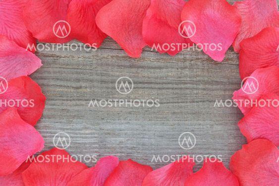 Steg kronblade på tekstureret træ. Closeup.