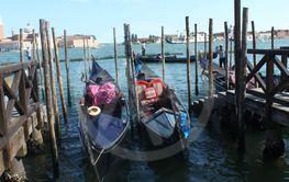 gondolly in Venice
