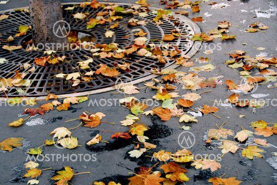 City hösten