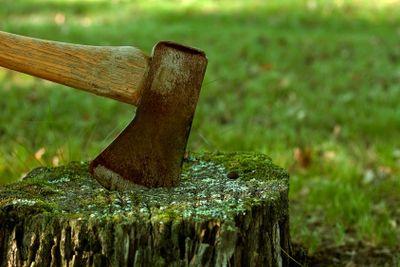 rusty axe in a tree stump