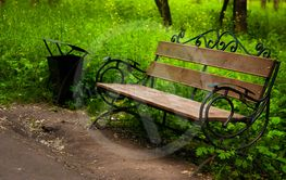 Empty wooden bench in the park beside the grass and path