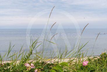 Vid havet