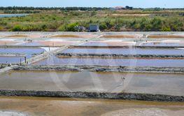 Ile de Ré salt lake and tools for harvesting
