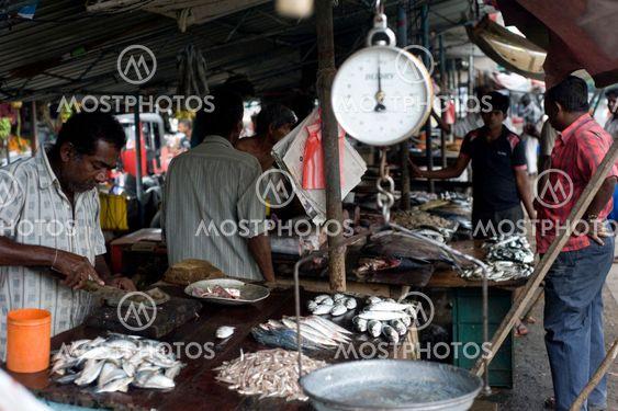 Fiska marknaden