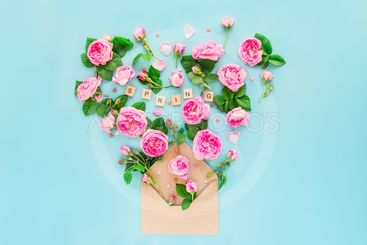 Close up creative layout with pink tea rose flowers,...