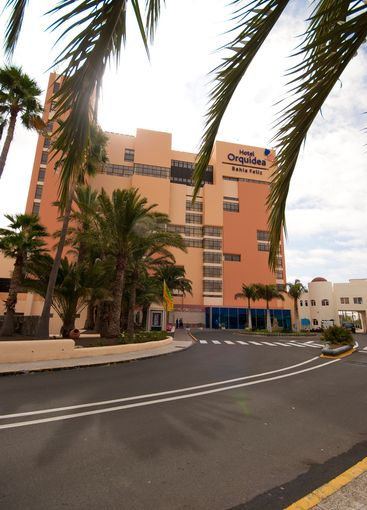 Hotel with palm trees 1