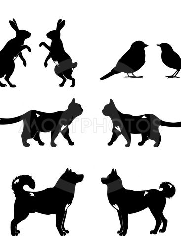 Set of lovely animal lovers couples: hares, birds, cats,...