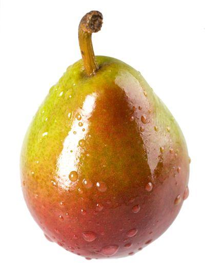 Wet Seckel Pear