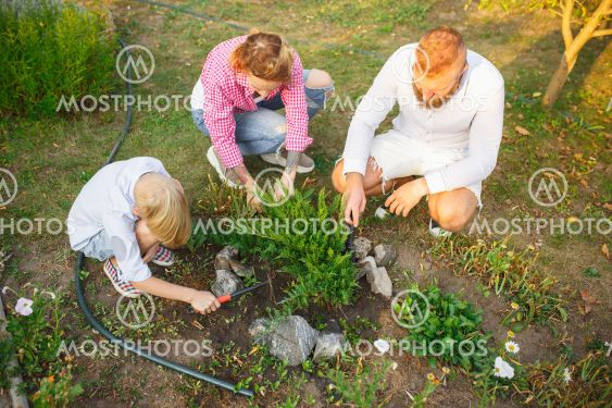 Happy family during plant care in a garden outdoors....