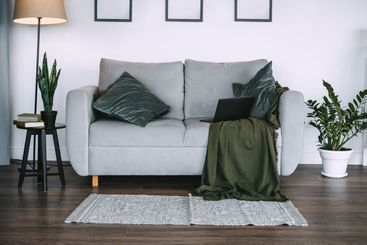 Living room with green plants and grey sofa with pillow...