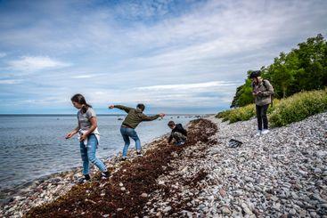 Familj på vacker sten strand Visby Gotland.