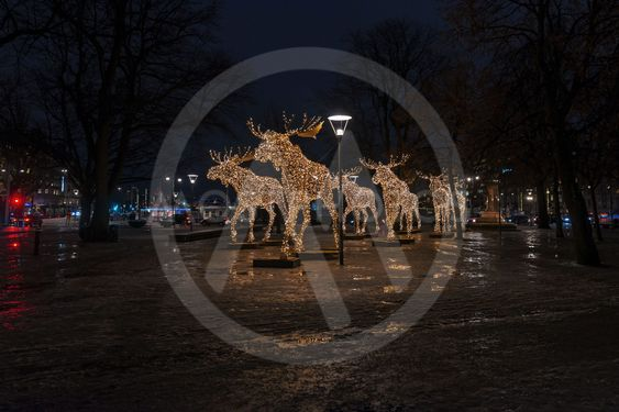 group of christmas moose made of led lights