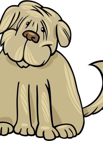 shaggy terrier dog cartoon illustration