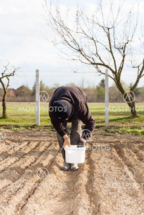 A woman plants a garden
