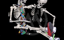 Afternoon Skeleton Chat
