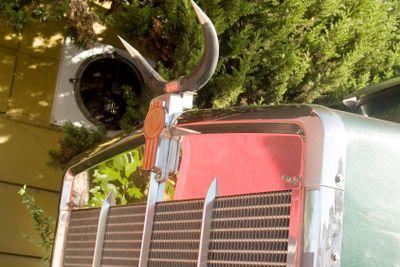 truck horn horned