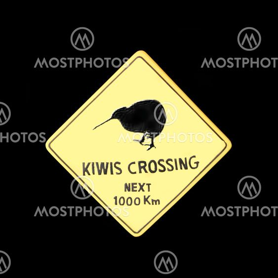 Kiwi crossing (bird)