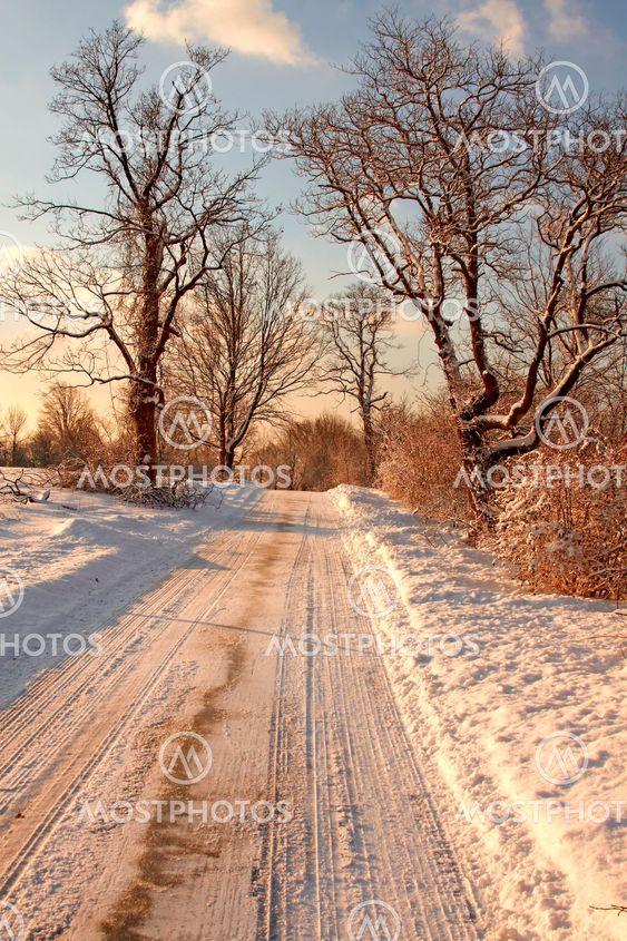 Lumi kuuluvien puiston varhain aamulla valossa.