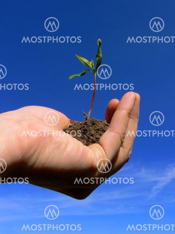 Hantering av tillväxt