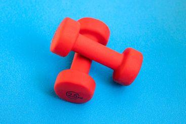 Red weights 2,5 kg