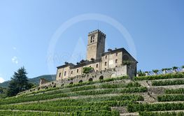 The estate of the castle of Sarre and its vineyard in...