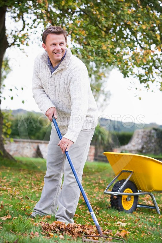 Man raking autumn leaves