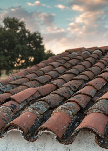 roof of an old farm in spain
