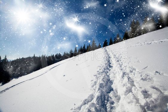 Christmas background with snowy path in the snow