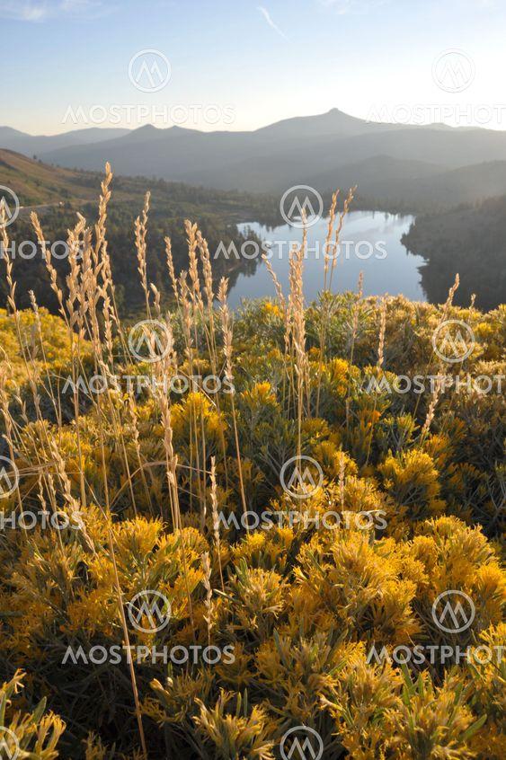 Sierra Fall farver
