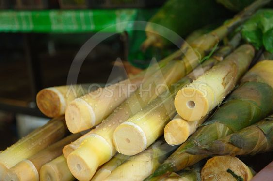 Bamboo shoots at Laemdin Market