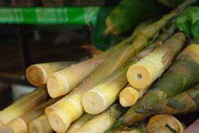 Bamboo shoots at Laemdin Market