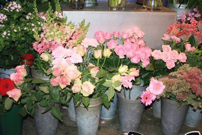 Pink roses displayed in flower shop