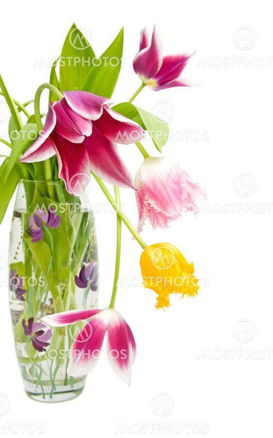 buket af tulipaner i forskellige farver i vase