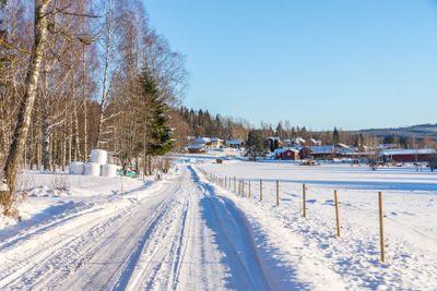 Village road in winter