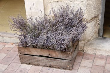 Wooden crate with lavender
