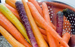 Tasty Organic Carrots
