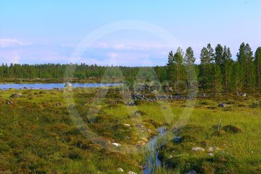The beautiful nature of Finland