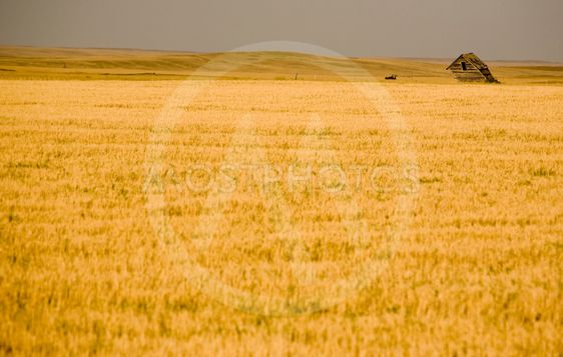 Landsbygdens Saskatchewan