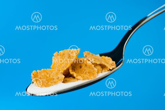 Corn flakes on the spoon