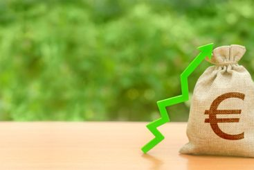 Money bag with Euro symbol and green up arrow. Increase...