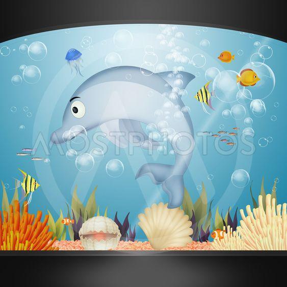 dolphin in the aquarium