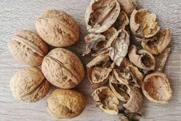Five whole walnuts and nutshell