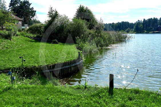 Lake at summertime