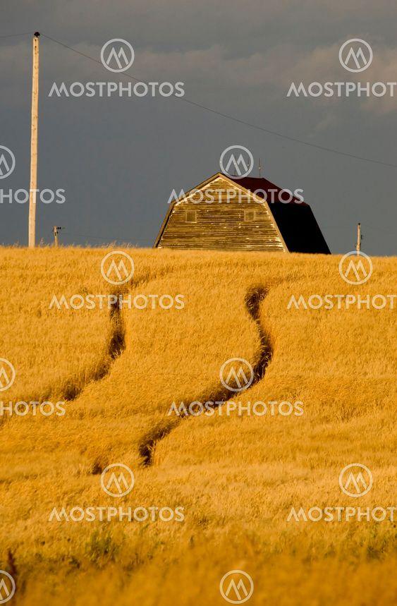 Landdistrikterne Saskatchewan