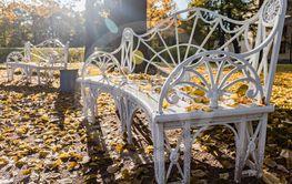 Autumn landscape and landscape in the Park of Pavlovsk,...