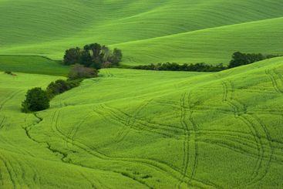 Landschaft in der Toskana, Italien - Landscape in...