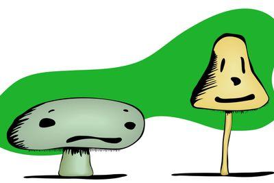 Mushroom Sad and Happy Faces