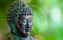 Budha Statue with Green Background